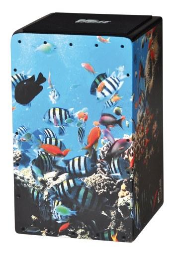 Cool Cajon Aquablog Size L (29 x 30 x 48,5 cm)