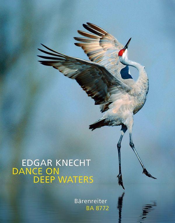 Knecht, Edgar - Dance on deep Waters :