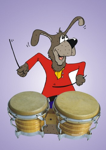 Dog playing Drums