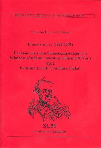 Fantasie über den Sehnsuchtswalzer von Schubert op.2: für Horn und Orchester