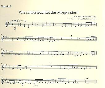 5 Choralvorspiele der Romantik: für Orgel und Blechbläser (Posaunenchor)