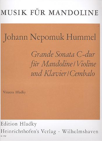 Grande Sonata C-Dur: für Mandoline (Violine) und