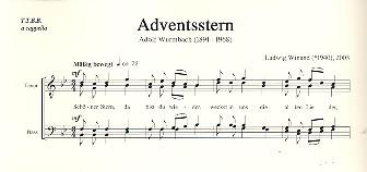 Adventsstern: für Männerchor a cappella
