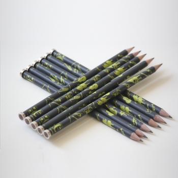 Bleistift Instrumente schwarz/grau/bunt mit Magnet   - Coverbild-Thumbnail